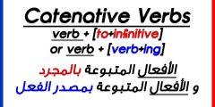 افضل برنامج لتعليم قواعد اللغة الانجليزية للمبتدئين