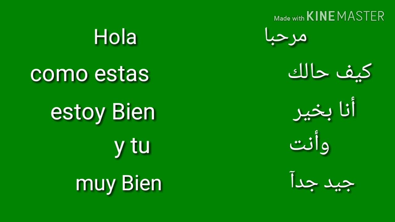 مجالات العمل باللغة الإسبانية في مصر